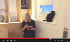 Lynne's American publisher, Melville House, made a video for the book's release. What do the cats think of all this?