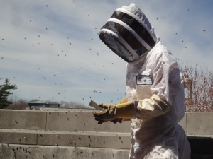 A beekeeper standing, surrounded by flying bees.