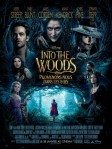 Movie poster for 2014 movie Into the Woods