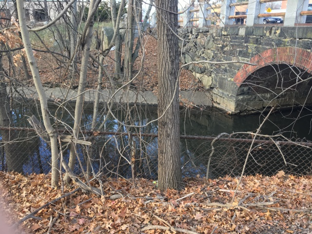 Alewife Brook 2016
