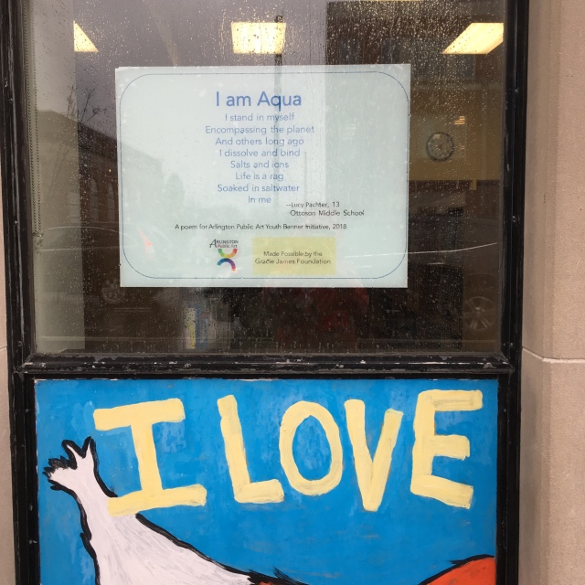 Youth Poetry Window